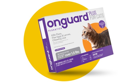 Onguard Plus for cats