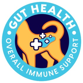 Gut Health for Good Health