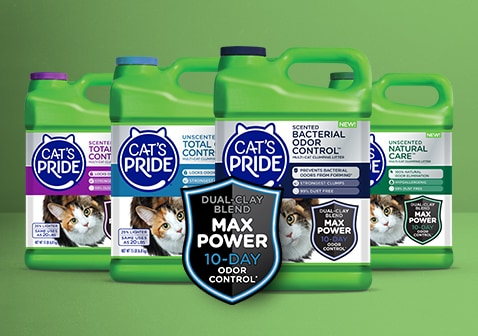 Dual Clay Blend Max Power 10 day odor control