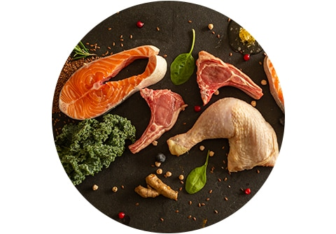 Animal Protein: #1 Ingredient