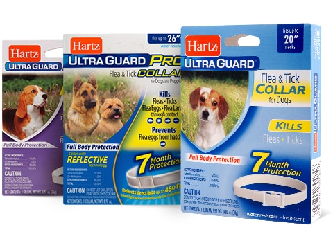 UltraGuard Collars for Dogs