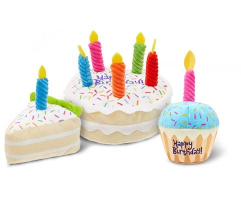 Remarkable Frisco Plush Squeaking Birthday Cake Dog Toy Small Medium Chewy Com Funny Birthday Cards Online Alyptdamsfinfo