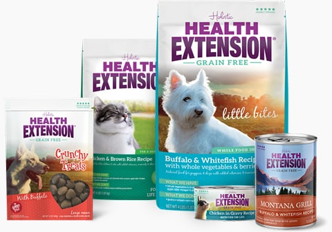 About Health Extension