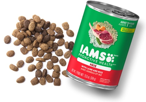 IAMS - Mix Things Up