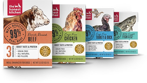 The Honest Kitchen Meal Booster 99 Chicken Wet Dog Food Topper 5 5 Oz Case Of 12 Chewy Com