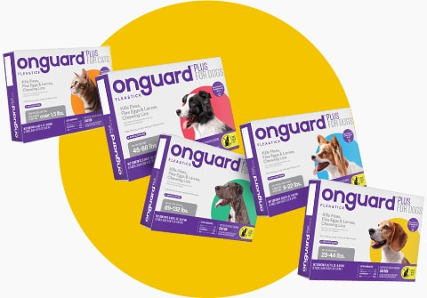 About Onguard Plus Flea & Tick