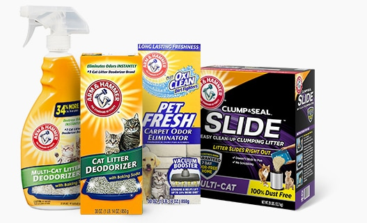 About Arm & Hammer