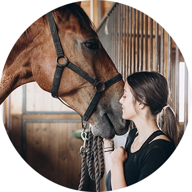 Family-Owned and Dedicated to Horses